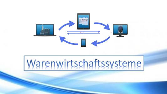Die-verschiedenen-Typen-der-Warenwirtschaftssysteme