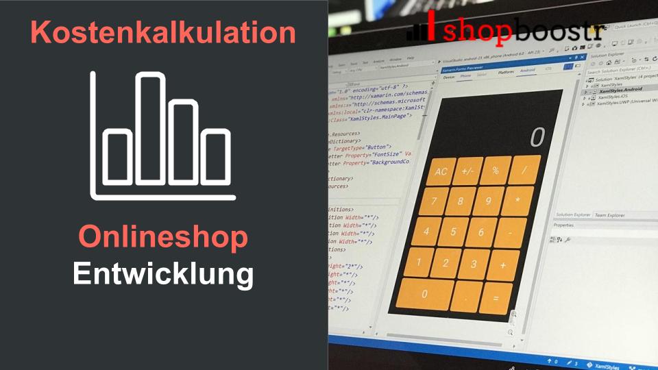 Kostenkalkulation-Onlineshop-Entwicklung